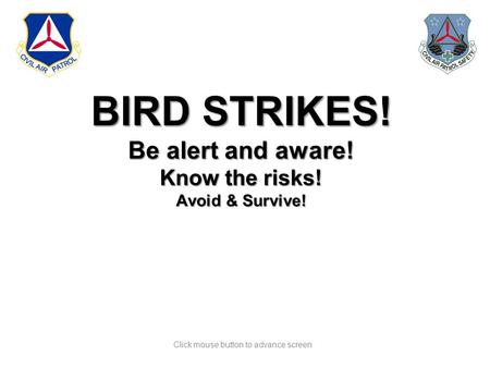 Click mouse button to advance screen BIRD STRIKES! Be alert and aware! Know the risks! Avoid & Survive!