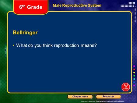 Copyright © by Holt, Rinehart and Winston. All rights reserved. ResourcesChapter menu Male Reproductive System Bellringer What do you think reproduction.