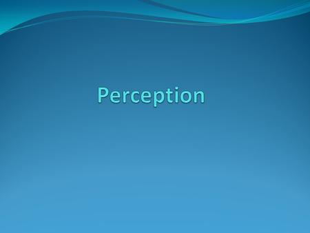 What Are Perceptions? Cognitive interpretations of people, things, and events within your world.