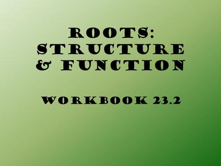 ROOTS: STRUCTURE & FUNCTION