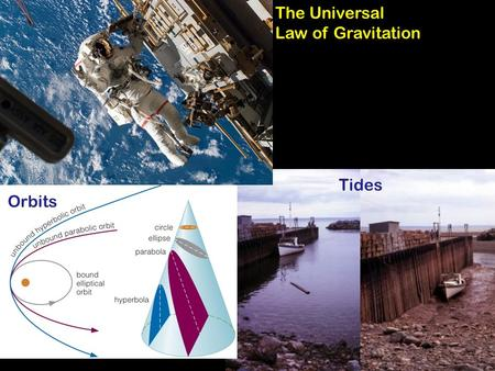 Orbits Tides The Universal Law of Gravitation. Announcements Test #1 is next Wednesday: Do not leave today without the Study Guide/Crossword puzzle. Monday.
