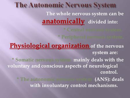 Anatomically The whole nervous system can be anatomically divided into: * Central nervous system. * Peripheral nervous system. Physiological organization.