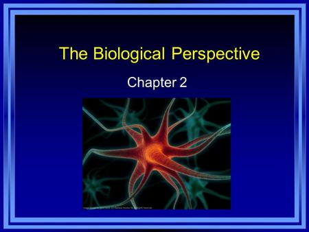 The Biological Perspective Chapter 2. Overview of Nervous System Nervous System - an extensive network of specialized cells that carry information to.
