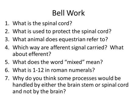 Bell Work 1.What is the spinal cord? 2.What is used to protect the spinal cord? 3.What animal does equestrian refer to? 4.Which way are afferent signal.