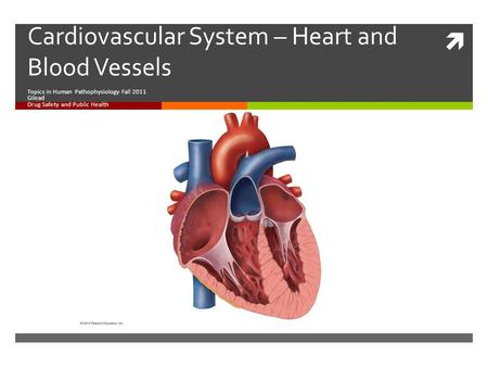  Cardiovascular System – Heart and Blood Vessels Topics in Human Pathophysiology Fall 2011 Gilead Drug Safety and Public Health.