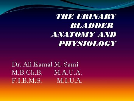 THE URINARY BLADDER ANATOMY AND PHYSIOLOGY Dr. Ali Kamal M. Sami M.B.Ch.B. M.A.U.A. F.I.B.M.S. M.I.U.A.
