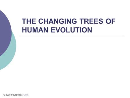 THE CHANGING TREES OF HUMAN EVOLUTION © 2008 Paul Billiet ODWSODWS.