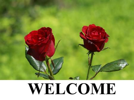 WELCOME. INTRODUCTION Md. Nazrul Islam Assistant Teacher Mushroil GPS Paba, Rajshahi Class: Five Subject: English Date: 28.04.2014.