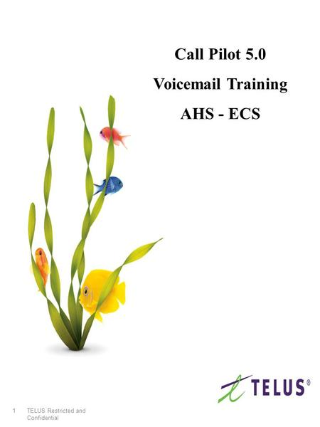 TELUS Restricted and Confidential 1 Call Pilot 5.0 Voicemail Training AHS - ECS.