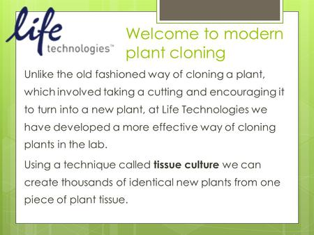 Welcome to modern plant cloning Unlike the old fashioned way of cloning a plant, which involved taking a cutting and encouraging it to turn into a new.