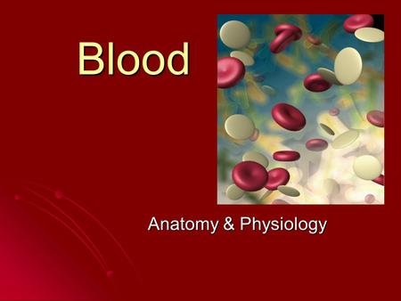 Blood Anatomy & Physiology. Functions of blood Transportation Transportation Heat regulation Heat regulation.