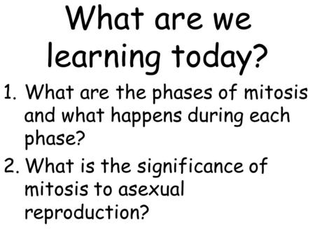 Significance of mitosis in asexual reproduction