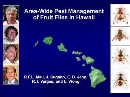 Hawaii Maui Molokai Oahu Kauai Lanai Kahoolawe Niihau Area-Wide Pest Management of Fruit Flies in Hawaii R.F.L. Mau, J. Sugano, E. B. Jang, R. I. Vargas,