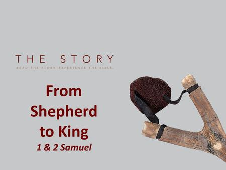 From Shepherd to King 1 & 2 Samuel.
