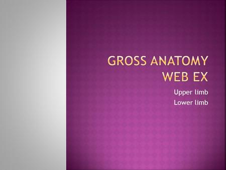 Gross anatomy Web ex Upper limb Lower limb.