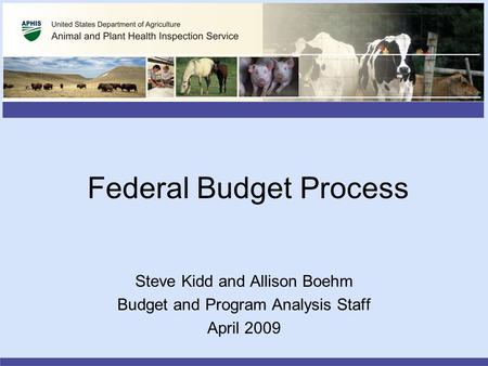 Federal Budget Process Steve Kidd and Allison Boehm Budget and Program Analysis Staff April 2009.