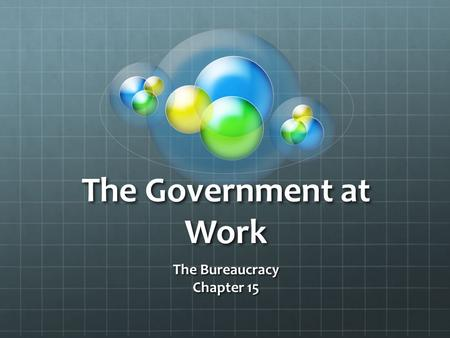 The Bureaucracy Chapter 15