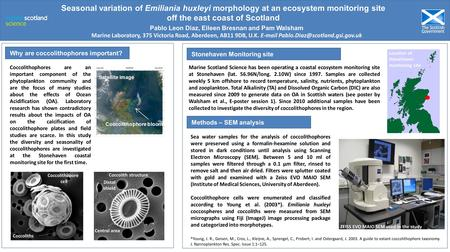 Location of Stonehaven monitoring site Stonehaven Monitoring site Why are coccolithophores important? Seasonal variation of Emiliania huxleyi morphology.