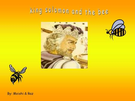 By: Moishi & Raz Story 1 King Solomon is very wise king. He can talk with people and he can talk with animals. People come to the king for help. --------------