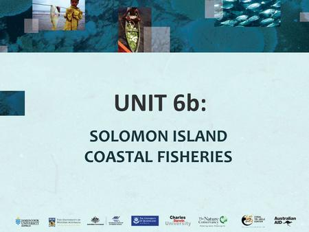 UNIT 6b: SOLOMON ISLAND COASTAL FISHERIES. 2 Coastal fisheries Activity 6.1: Assess prior knowledge by class discussion of their understanding of coastal.
