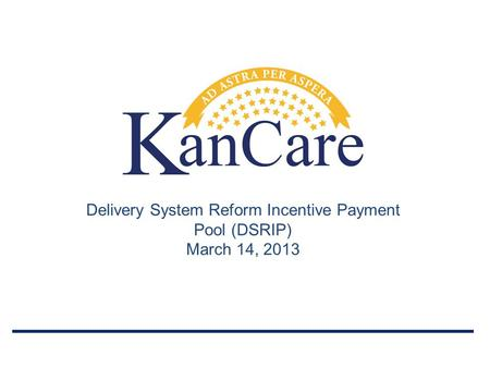 Delivery System Reform Incentive Payment Pool (DSRIP) March 14, 2013.