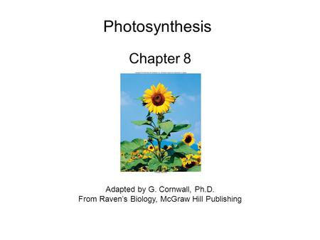 Photosynthesis Chapter 8 Adapted by G. Cornwall, Ph.D.