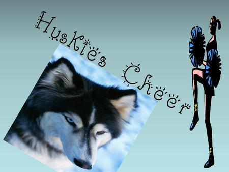 Huskies Cheer. Cheer Binders You will be required to keep a cheer binder with the following inside: Practice attire schedule Warm-ups and tumbling progression.