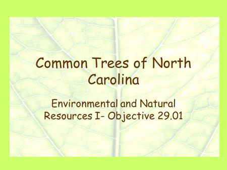 Common Trees of North Carolina Environmental and Natural Resources I- Objective 29.01.