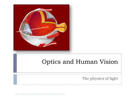 Optics and Human Vision The physics of light