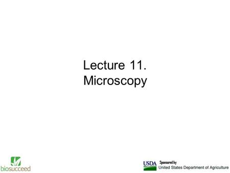 Lecture 11. Microscopy. Optical or light microscopy involves passing visible light transmitted through or reflected from the sample through a single or.