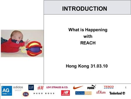 1 INTRODUCTION What is Happening with REACH Hong Kong 31.03.10.