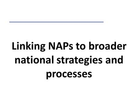 Linking NAPs to broader national strategies and processes.