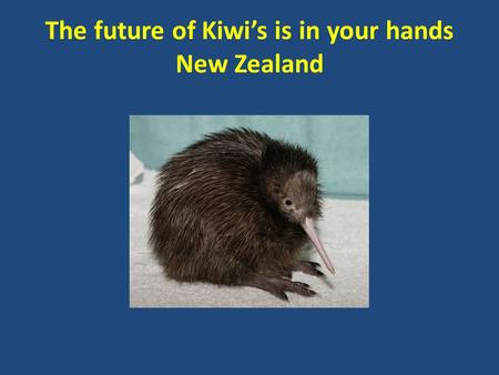 The future of Kiwi's is in your hands New Zealand.