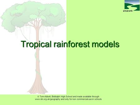  Tom Abbott, Biddulph High School and made available through www.sln.org.uk/geography and only for non commercial use in schools Tropical rainforest models.