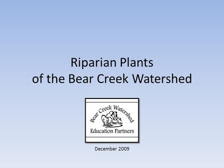 Riparian Plants of the Bear Creek Watershed December 2009.