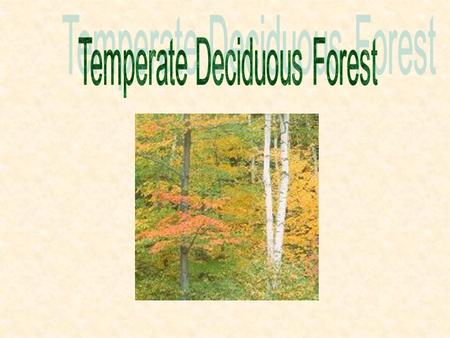 Average 50ºF 75 to 126 cm (30 to 50 in) Four Seasons: Winter, Spring, Summer, Fall Forest Fire, Sunlight.