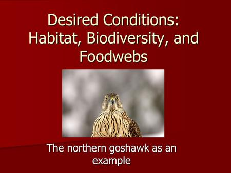 The northern goshawk as an example Desired Conditions: Habitat, Biodiversity, and Foodwebs.