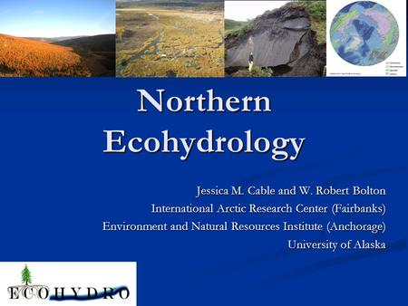Northern Ecohydrology Jessica M. Cable and W. Robert Bolton International Arctic Research Center (Fairbanks) Environment and Natural Resources Institute.
