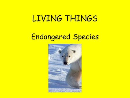 LIVING THINGS <strong>Endangered</strong> <strong>Species</strong>. Thailand survivor The annual Red List of <strong>species</strong> threatened with extinction has been published by IUCN-The World Conservation.
