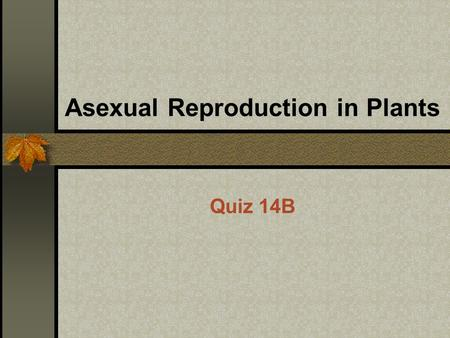 Asexual reproduction runners definition of socialism