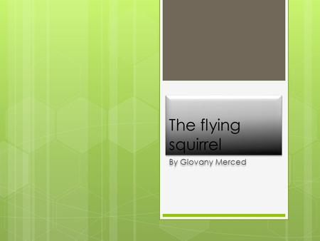 The flying squirrel By Giovany Merced. climate  The climate they need is some wind and sunny weather.