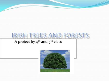 A project by 4th and 5th class. Silviculture Silviculture is the growing of trees Silviculture is the growing of trees The Irish State Forestry department.