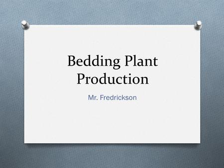 Bedding Plant Production Mr. Fredrickson. Bedding Plants are: O Annuals O Complete their life cycle in one growing season. O Desired for their color or.