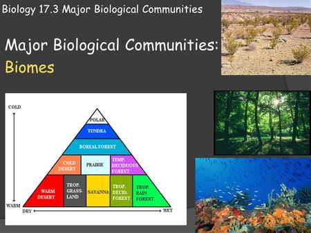 Biology 17.3 Major Biological Communities