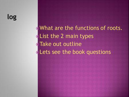 log What are the functions of roots. List the 2 main types