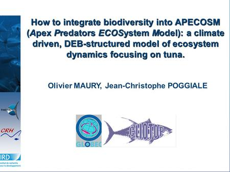 How to integrate biodiversity into APECOSM (Apex Predators ECOSystem Model): a climate driven, DEB-structured model of ecosystem dynamics focusing on tuna.
