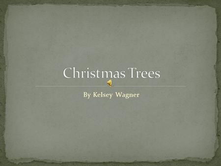 By Kelsey Wagner Arizona Cyprus Colorado Blue Spruce Concolor Fir Eastern Red Cedar Fraser Fir Leyland Cyprus Norway Spruce Virginia Pine.