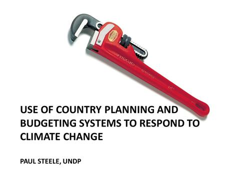 USE OF COUNTRY PLANNING AND BUDGETING SYSTEMS TO RESPOND TO CLIMATE CHANGE PAUL STEELE, UNDP.
