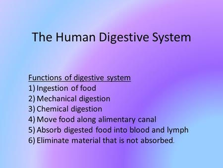 The Human Digestive System Functions of digestive system 1)Ingestion of food 2)Mechanical digestion 3)Chemical digestion 4)Move food along alimentary canal.