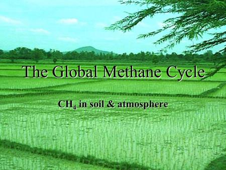 The Global Methane Cycle CH 4 in soil & atmosphere.